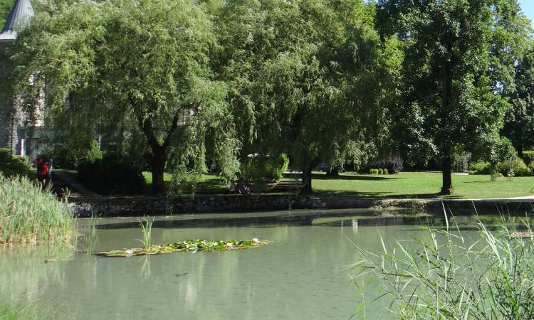 Le parc de Triviers